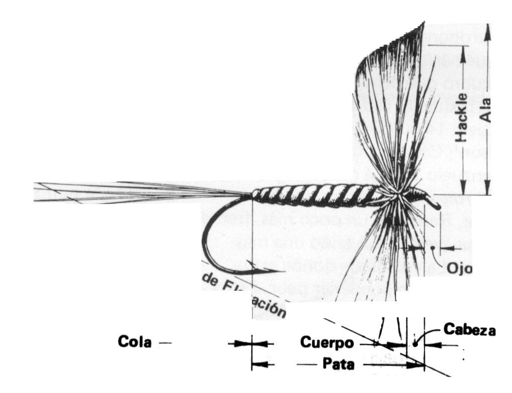 Boletín Mosquero 31 | Asociación Argentina de Pesca con Mosca